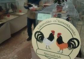 Clubshow Oneto in Enschede afgelast door vogelgriep