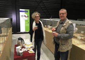 Fentsahm, Bierman & Wenting winnaars Gallinova Clubshow